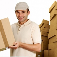 movers-and-packers-are-the-only-solutions-to-shifting-problems
